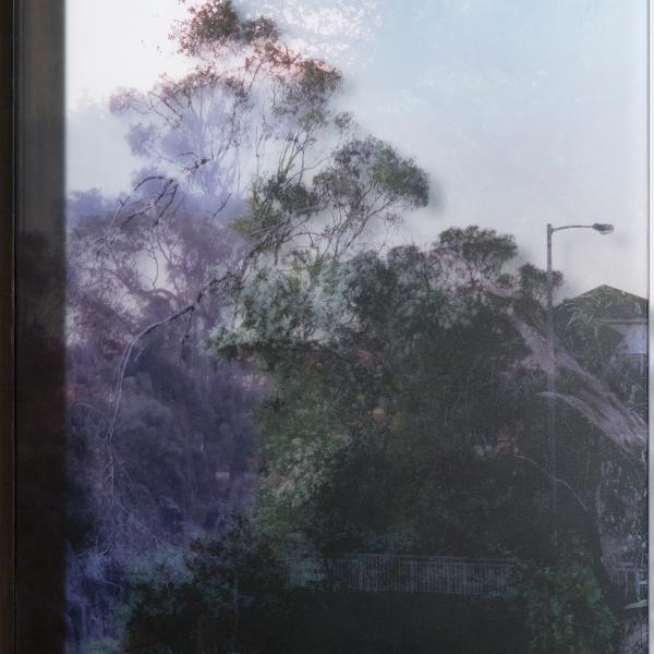 A glass panel that resembles a window with what appears to be a landscape scene. A closer look shows that the scene also shows shadows and reflections of other scenes.